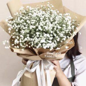 bo-hoa-baby-trang-e1599718461220.jpg